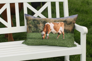 Cow_cushion_1