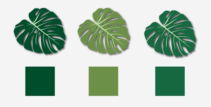 leaf colour sampling