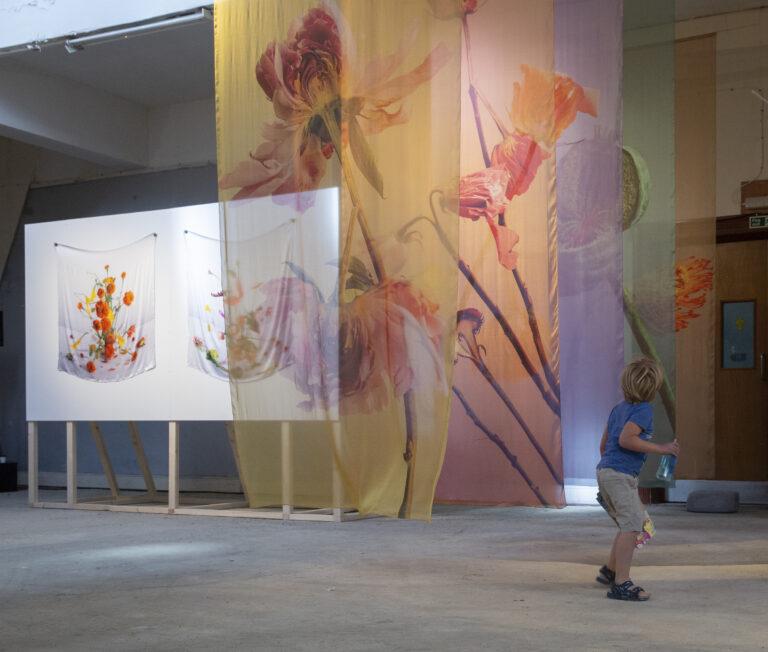 Lisa King Exhibition