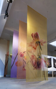 Lisa King Exhibition photo